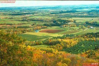 一个秋天的情景。